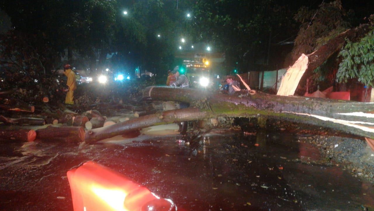 Fuerte aguacero en el Aburrá tumbó árboles e inundó vías