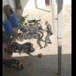 Video viral: policía es captado en plena 'batalla' contra una tortuga